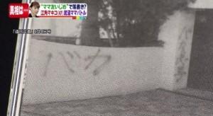 esumimakiko-baka